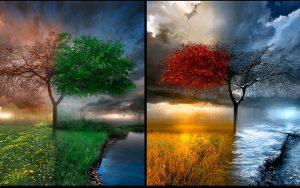 сезонна депресия, сезонно афективно разсртойство